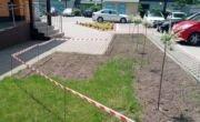 Informacja o otrzymaniu pomocy finansowej na zakup oraz nasadzenie drzew i krzewów miododajnych na terenie Gminy Daleszyce